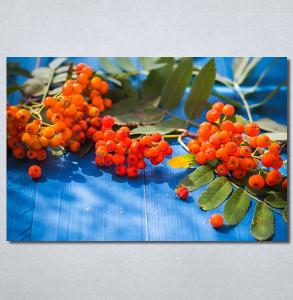 Slike na platnu Bobice Nina30258_P