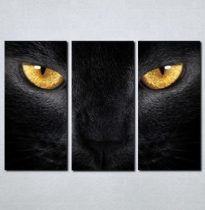 Slike na platnu Crna mačka Nina030_3