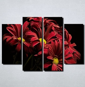 Slike na platnu Crveno cvece Nina115_4