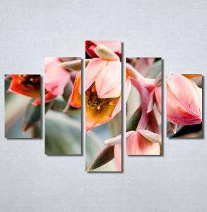 Slike na platnu Cveće Nina30274_5