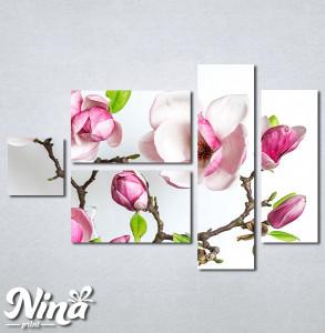 Slike na platnu Cvet magnolije Nina339_5