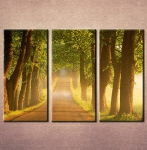 Slike na platnu Drvored Nina3083_3