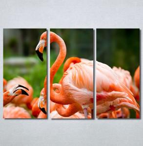 Slike na platnu Flamingo ptica Nina30256_3