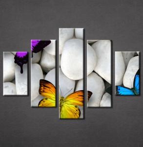 Slike na platnu Kamen i leptiri Nina3094_5