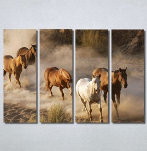 Slike na platnu Konji 2 Nina30337_4