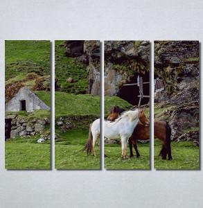 Slike na platnu Konji Nina30188_4