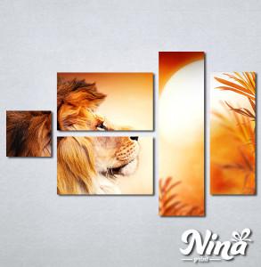 Slike na platnu Lav kralj životinja Nina308_5