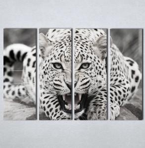 Slike na platnu Leopard Nina123_4