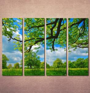 Slike na platnu Livada i krošnja drveta Nina30119_4