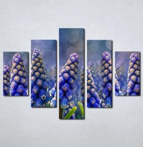 Slike na platnu Ljubicasti cvet neobičnog oblika Nina002_5
