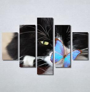 Slike na platnu Mačka i leptir Nina30250_5