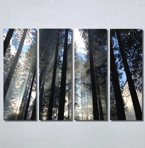 Slike na platnu Mračna šuma Nina30195_4