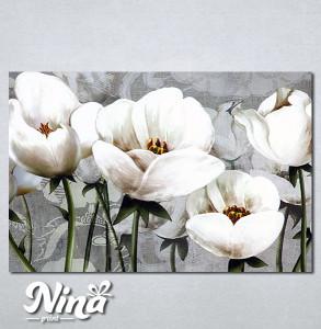 Slike na platnu Nezno beli cvet Nina347_P