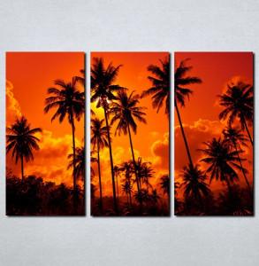 Slike na platnu Palme i zalazak sunca Nina062_3