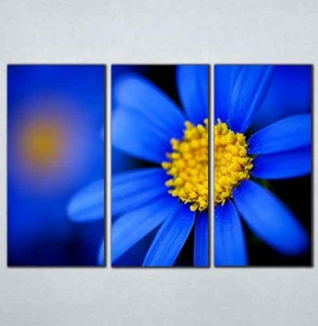Slike na platnu Plavi cvet Nina095_3