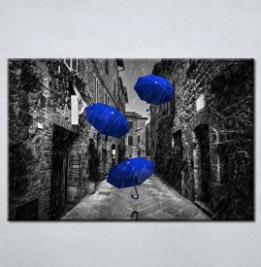 Slike na platnu Plavi kisobrani Nina212_P