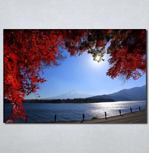 Slike na platnu Pogled na more kroz crveno lišće Nina30107_P