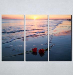 Slike na platnu Ruže na plaži Nina066_3