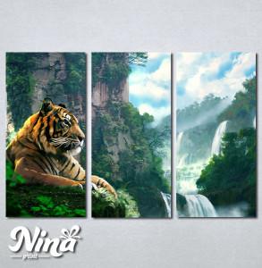 Slike na platnu Tigar Nina245_3
