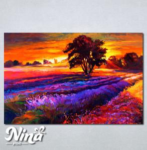 Slike na platnu Zalazak sunca i sarena poljana Nina239_P