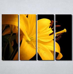 Slike na platnu Zuti cvet Nina103_4