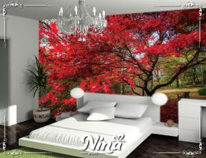 Foto tapet Drvo i crveno lisce Tapet199