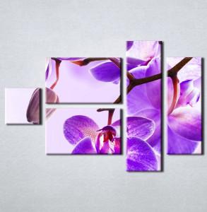 Slika na platnu Ljubicasta orhideja 3023_5