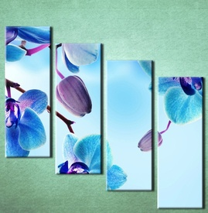 Slika na platnu Plava orhideja 3025_4