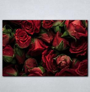 Slike na platnu Buket crvenih ruza Nina143_P