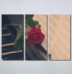 Slike na platnu Crvena ruža i klavir Nina30228_3