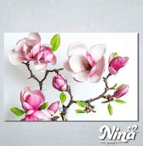 Slike na platnu Cvet magnolije Nina339_P