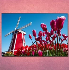 Slike na platnu Holandija Nina30106 _P