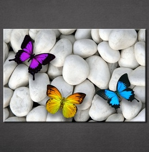 Slike na platnu Kamen i leptiri Nina3094_P