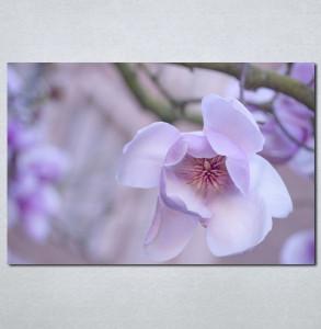 Slike na platnu Ljubicasti cvet Nina001_P