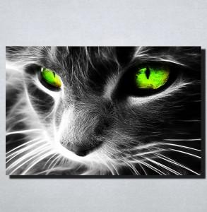 Slike na platnu Macka sa zelenim ocima Nina167_P