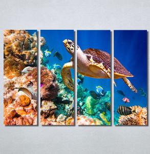 Slike na platnu Morski svet Nina30215_4