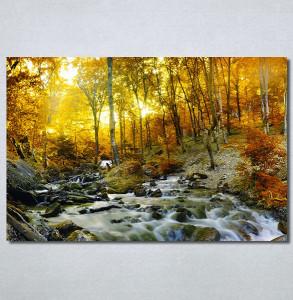 Slike na platnu Potok kroz šumu Nina30273_P