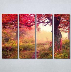 Slike na platnu Prelepa jesen u šumi Nina30244_4