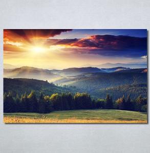 Slike na platnu Proplanak Nina30310_P