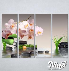 Slike na platnu Roze orhideja Nina304_4