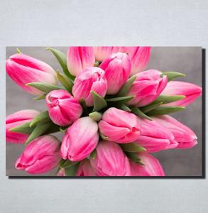 Slike na platnu Roze Tulipani Nina159_P