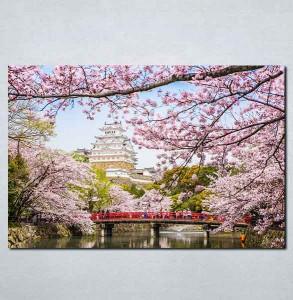 Slike na platnu Sakura Japan Nina083_P