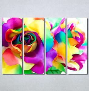 Slike na platnu Šarena ruža Nina30288_4