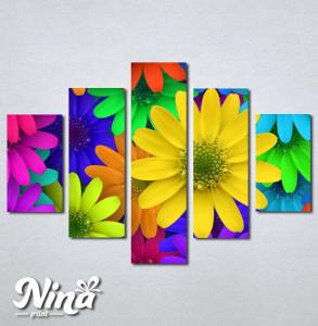 Slike na platnu Šareno cveće Nina250_5