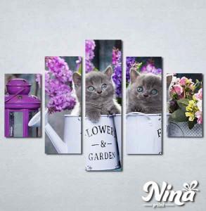Slike na platnu Sive mačke Nina311_5