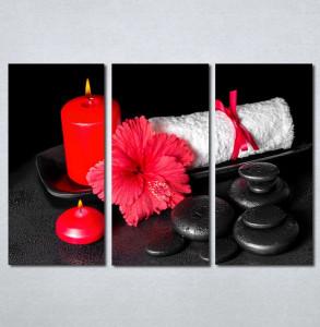 Slike na platnu Wellness spa 182_3