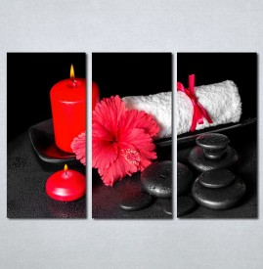 Slike na platnu Wellness spa crveni cvet Nina182_3