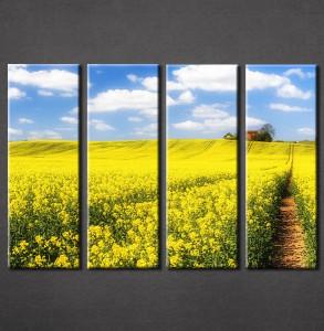 Slike na platnu Žuta poljana Nina3086_4