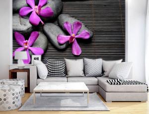 Foto tapeta Ljubicasti cvet i kamen Tapet126