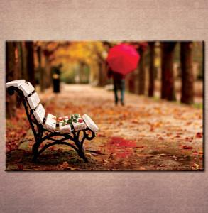 Slika na platnu  Klupa u parku 3001_P